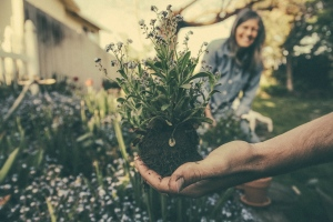 How To Properly Mulch Your Yard In Just A Few Simple Steps