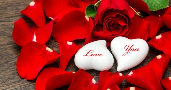 Send Beautiful and Fresh Flowers To Your Love Once For Special Occasions